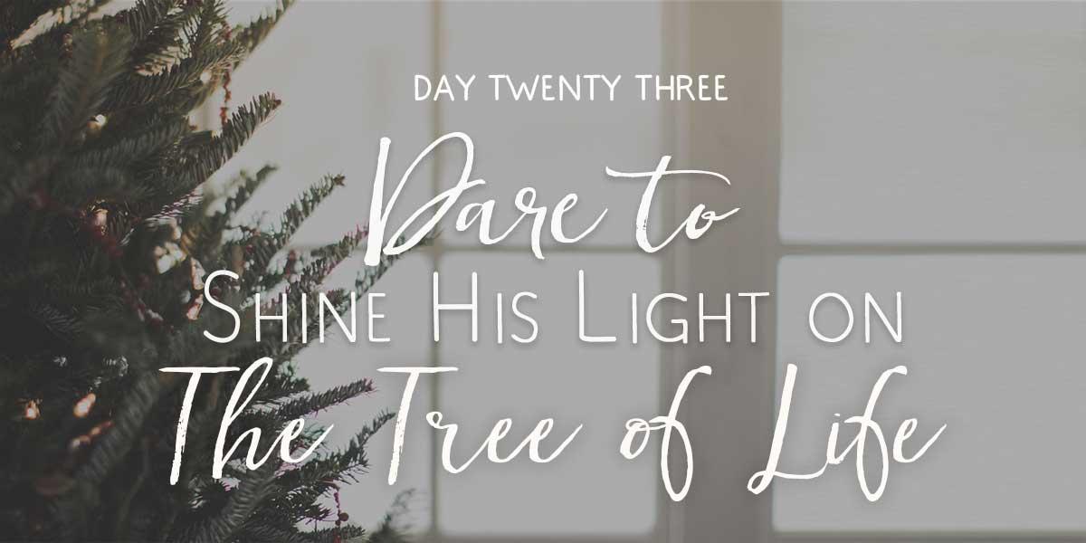 day23-christmas-advent2016