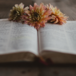 The 7 Habits of Strong Christians